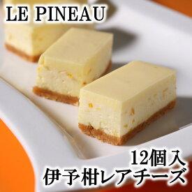 ルピノー 菓一座 伊予柑レアチーズ 10個入