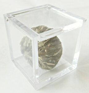 茉莉仙桃 【一粒・ケース入り】 中国工芸茶 プチギフト、引出物におすすめ