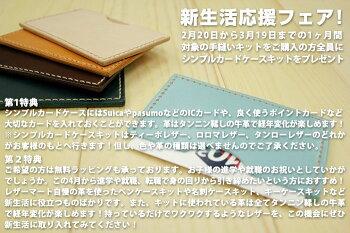 【レザークラフトキット】すぐに始められる初心者向けソフト牛革きなりソフトタンロー【カードケース】【ネコポス対応】