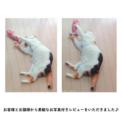 またたびポワソンまたたび入り猫ちゃんのおもちゃ猫のおもちゃポワソンねこネコ魚ネコ雑貨ネコグッズプレゼントギフトお返しルシアン
