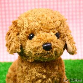 トイプードルのぬいぐるみ お座り(スターチャイルド)(犬 おもちゃ プレゼントにおすすめ ギフト 誕生日 記念日 バースデー かわいい 可愛い イヌ 結婚祝い 出産祝い) 卒業式 プレゼント ギフト お返し ルシアン