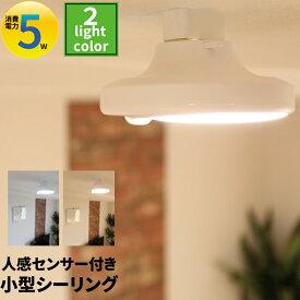 人感センサー led ライト 廊下 照明 人感センサーライト 屋内 室内 トイレ 廊下 天井 おしゃれ CL-SS08 ビームテック 電球色 昼光色 シーリングライト