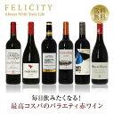 ワインセット 毎日飲みたい!最高コスパワイン バラエティ 赤ワイン 6本セット 第1弾 750ml×6 飲み比べ 赤 ワイン セ…