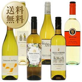 【送料無料】【包装不可】 ワインセット 白 気軽に楽しむ最高コスパワイン!バラエティ 白ワイン 6本セット 第1弾 750ml×6 飲み比べ ワイン セット