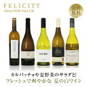 ワインセット 豊かな香りとコク 冬の白ワイン 5本セット 750ml×5 飲み比べ 白 ワイン セット 【送料無料】【包装不可】