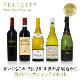 ワインセット 味わい深くエレガントな秋のバラエティ5本セット 750ml×5 赤ワイン 白ワイン 飲み比べ 赤 白 スパークリングワイン セット 【送料無料】【包装不可】