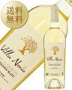 【今月の送料無料ワイン】 ヴィラ ノリア グラン プレステージ ソーヴィニヨン ブラン オーガニックワイン 2016 750ml 白ワイン フランス