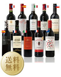 【送料無料】【包装不可】 3大銘醸地入り!世界5ヵ国選りすぐり赤ワイン10本セット 750ml×10 赤 ワイン セット