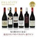 【期間限定:ポイント5倍】 毎日飲みたい!最高コスパワイン バラエティ 赤ワイン 6本セット 第5弾 750ml×6 飲み比べ…