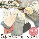 レディース綿混/五本指ソックス/5本指ソックス/レディース靴下
