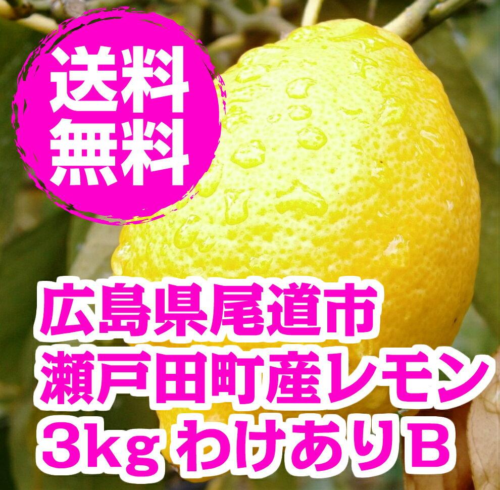 【わけあり】広島県産レモン 3kg 【ノーワックス】【防腐剤・防かび剤不使用】【北海道・沖縄地区は追加運賃540円ご負担下さいませ】