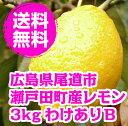 送料無料 わけあり 広島県産 防腐剤・防かび剤不使用 ノーワックス 露地栽培レモンB 3kg 皮ごと食べられます …