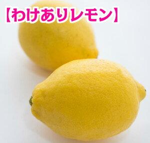 【わけあり】【国産】 広島県尾道市瀬戸田町産レモン 10kg 【ノーワックス】【防腐剤・防かび剤不使用】