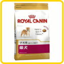 ROYALCANIN BHN 柴犬 子犬用 3kg【ロイヤルカナン】【正規品】