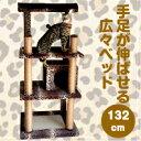 キャットタワー 据え置き スリム 猫タワー 省スペース 多頭飼い 爪とぎ ヒョウ柄 置き型 CTB-1【猫びより】【ねこ】掲…