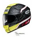 Shoei (ショウエイ) GT-Air (GTエアー) Luthi (ルティ ルティー) ヘルメット マットカラー (ピンロックシート付属) (QSV-1 サ...