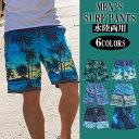 水着 サーフパンツ メンズ 海パン 海水パンツ サーフショーツ 大きいサイズ ショートパンツ ハーフパンツ 短パン post ランキングお取り寄せ