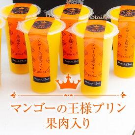 【送料無料】プレミアムプリン|マンゴーの王様プリン・果肉入り 6個セット 大サイズ 120ml/個 お中元 内祝 お祝い