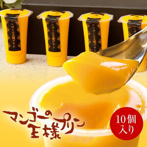 【送料込】マンゴーの王様プリン 120mlサイズ 10個セット お祝い ギフト お中元 内祝い