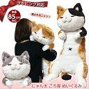 にゃん太ごろ寝ぬいぐるみ 全5種類 2号 | ねこ 猫 ネコ ぬいぐるみ 抱き枕 特大 かわいい ビッグ 送料無料 プレゼント…