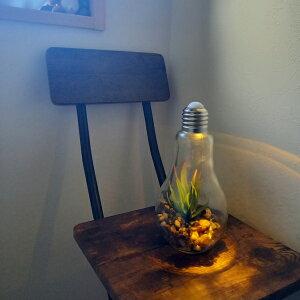 【オシャレ】【雑貨】【テラリウム】【観葉植物】【食虫植物】【植物】【ガーデニング】【オブジェ】【ボタニカル】【フラワー】【アレンジ】電球型インテリアライト Terrarium A