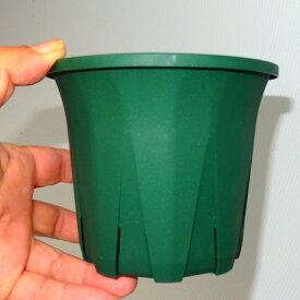 【緑スリット鉢】【プラ鉢】