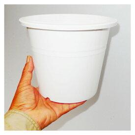 6号 シンプルプラスチック鉢