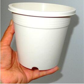 4.5号 シンプルプラスチック鉢