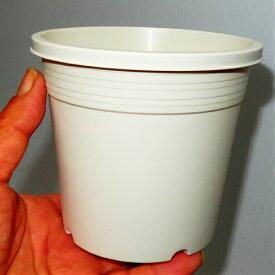 4号 シンプルプラスチック鉢