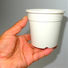 3.5号 シンプルプラスチック鉢