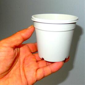 3号 シンプルプラスチック鉢