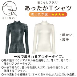 【B】〈10/319:59まで30%OFF〉ワコールスゴ衣着こなしプラスあったかTシャツニットトップスタンダードUネック(M・Lサイズ/フルスリーブ)CLD323[m_b]