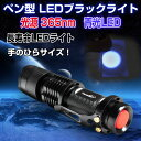 ペン型 LEDブラックライト 2000時間長寿命 ブルーライト 365nm 青光LED 高輝度100Lm 最大照明50m ◇FAM-TANK007