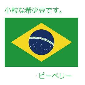焙煎人珈琲豆也のブラジルピーベリー 100g【豆でも粉でも可】