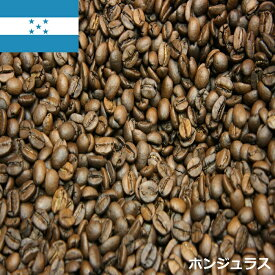 \2袋以上の購入で送料無料 メール便発送/【ホンジュラスコーヒー豆100グラム 豆でも粉でも可】送料無料 珈琲豆 珈琲豆