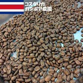 \送料無料/【コスタリカガンボア農園ホワイトハニー100g】コーヒー豆 珈琲豆 COFFEE シングルオリジン スペシャルティコーヒー