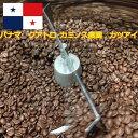 \全国送料無料 メール便発送/【スペシャルティコーヒー パナマ産クアトロ カミノス農園 カツアイ200グラム】コーヒー豆 豆でも粉で…