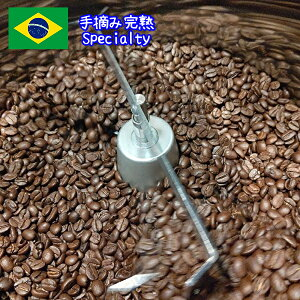 コーヒー コーヒー豆 1kg 【手摘み完熟コーヒー豆1000グラム(1キロ)】コーヒー粉 珈琲豆 ブラジルコーヒー セラード地域 スペシャリティ