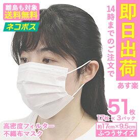 【送料無料】【ネコポス】マスク 在庫あり 50枚+1枚 51枚 箱 不織布 使い捨てマスク プリーツ プリーツマスク 大人用 男女兼用 使いすて 花粉症 花粉 ほこり ハウスダスト ウイルス 3層 ノーズワイヤー mk5100