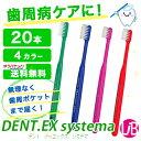 Dentex 20