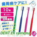 Lion dentex10