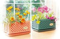 プランターおしゃれかわいい小さい花植え種植え花壇ベランダ室内プチ(フェンスプランター)200型10個組【まとめ買い】【3色から選べます】