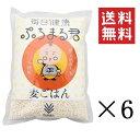 【まとめ買い】【セット買い】【西田精麦】熊本県産 大麦100%使用 毎日健康 ぷちまる君 1kg×6袋