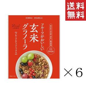 幸福米穀 玄米グラノーラ フルーツ&ナッツミックス 250g×6袋 まとめ買い 業務用 お徳用 食物繊維 送料無料