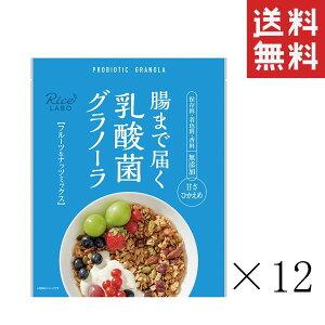幸福米穀 腸まで届く乳酸菌グラノーラ フルーツ&ナッツミックス 250g×12袋 まとめ買い 業務用 お徳用 食物繊維 送料無料