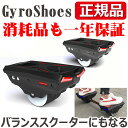 Gyroshoes102