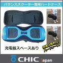 Chiccase01