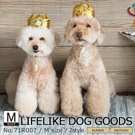 被り物 犬 猫 かぶりもの 帽子 小型犬 中型犬 LIFELIKE バースデークラウン M ダックス プードル 柴犬 キャバリア ビーグル シュナウザー バースデー イベント パーティグッズ インスタ映え 誕生日