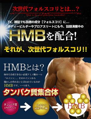 HMBフォルスコリ約5ヶ月分150粒