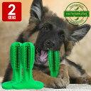 犬用歯ブラシ 2個組 犬 歯磨き 歯みがき デンタルケア おもちゃ